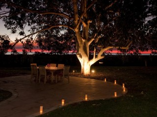 Established commercial Boab Tree Plantation & Boutique Resort/Retreat Opportunities